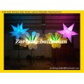 05 Lighting Inflatable Decoration LD26