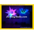 11 Inflatable Lighting Flowers LD23