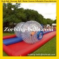 Zorb 24 Human Hamster Ball for Sale Cheap