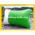Water Blob Pillow