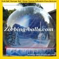 Snow Ball 06 Christmas Ball