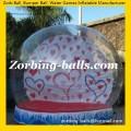 Snow Ball 07 Christmas Snowing Ball
